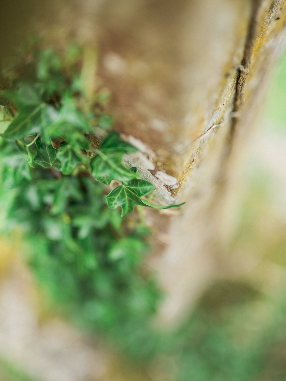 DanielleGirouxPhotography_EuropeTrip0C6A9776.jpg