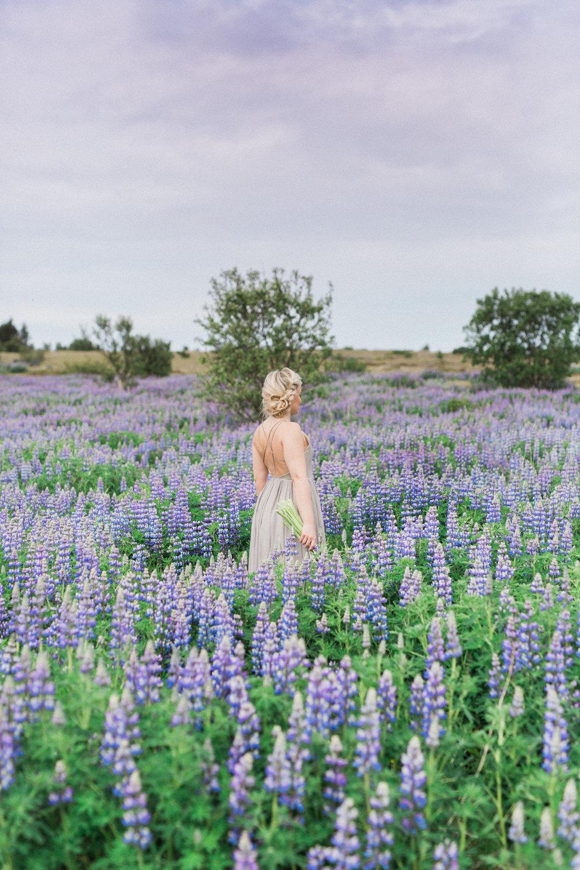 DanielleGiroux_LupinField_Iceland1844.jpg
