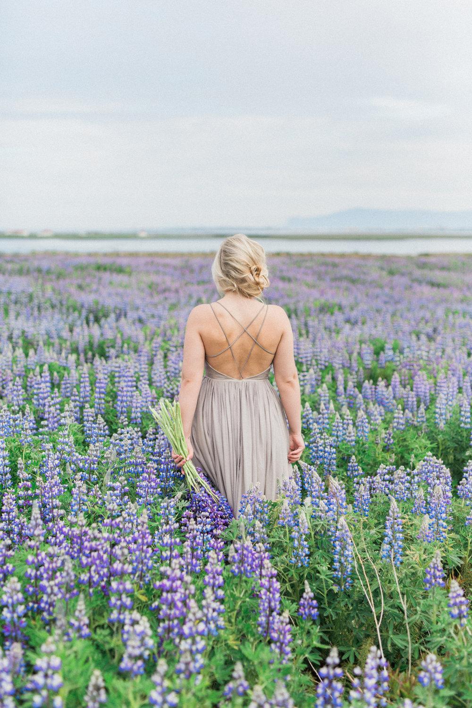 DanielleGiroux_LupinField_Iceland.jpg