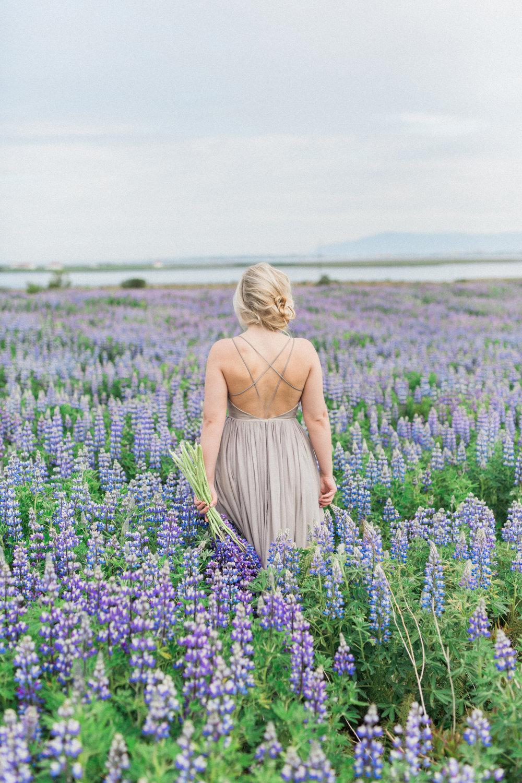 DanielleGiroux_LupinField_Iceland1882.jpg