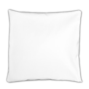 Pillowcase only [$15.00]