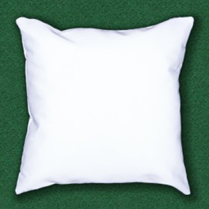 Pillowcase w/ stuffing [$17.00]