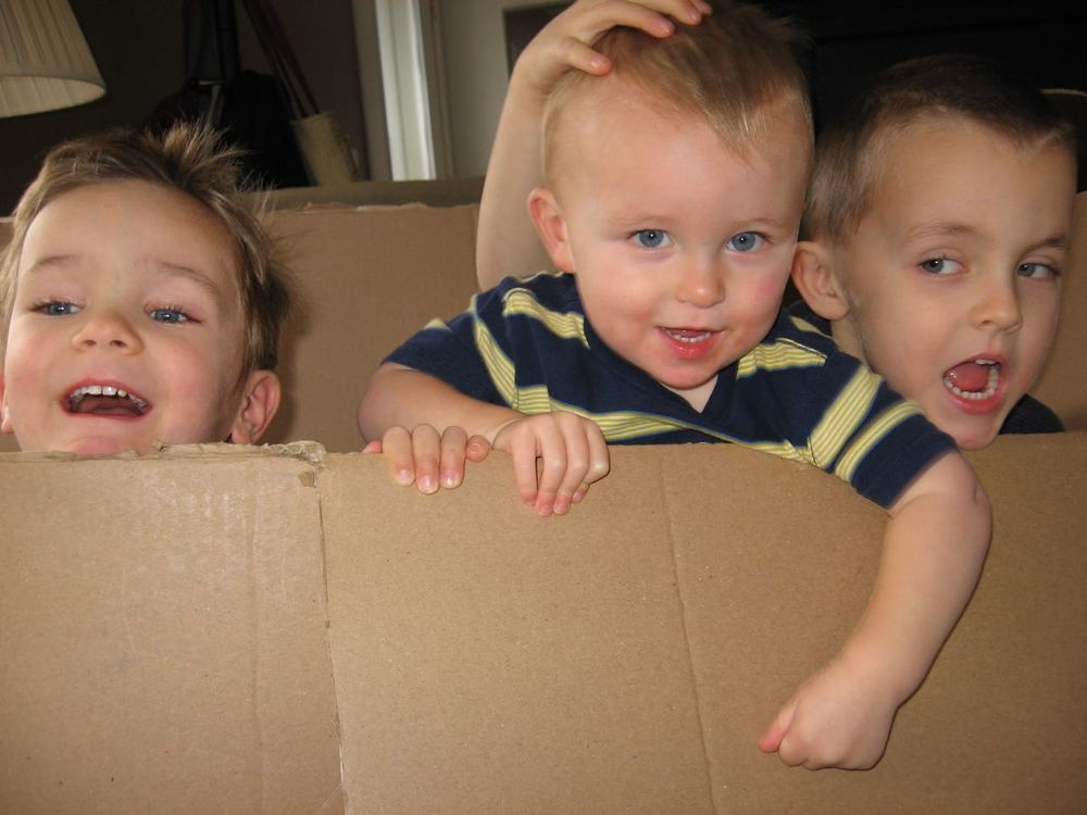 Box Boys IV