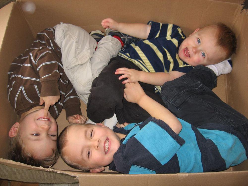 Box Boys VI