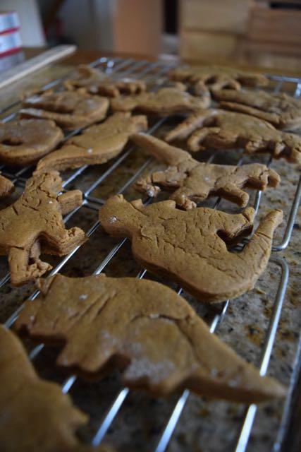 Micah's Dinosaur Gingerbread