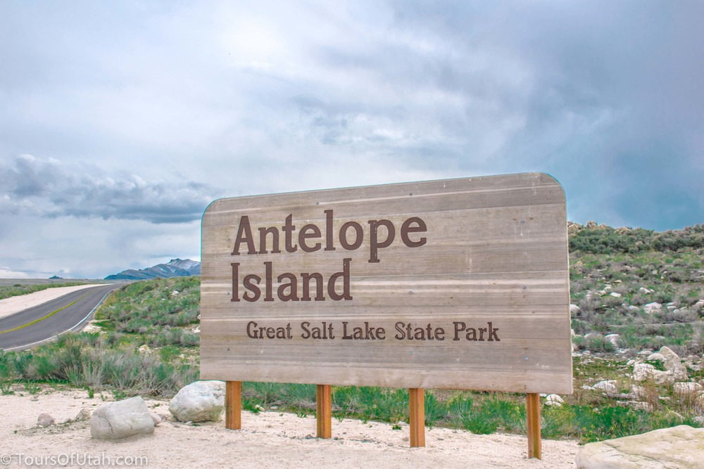 Salt Lake City Tours Antelope Island