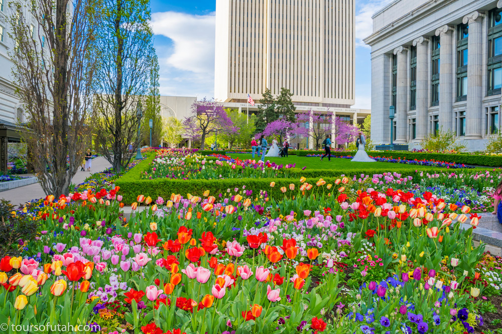 Tour Temple Square Gardens