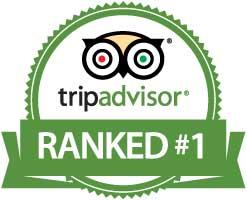 Best sightseeing tours in Salt Lake City