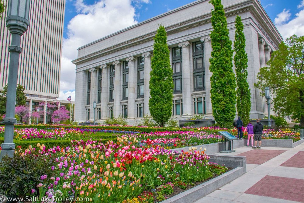 Flowers at Temple Square
