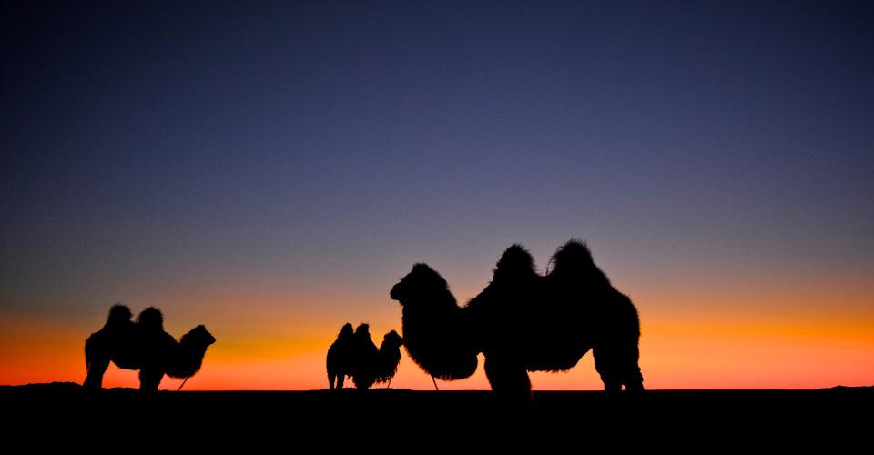 Mongolia14.jpg
