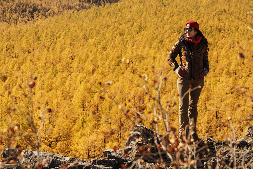 Standing among the golden pine forrest of Khuvsgul Lake.