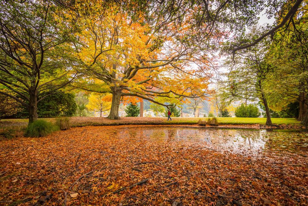 Queenstown - Queenstown Gardens