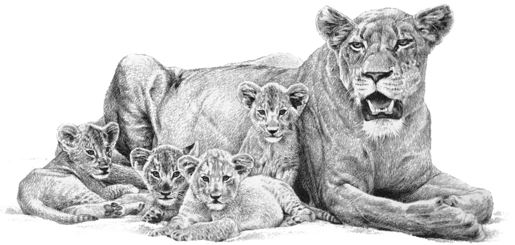 lioness_cubs_-PNG