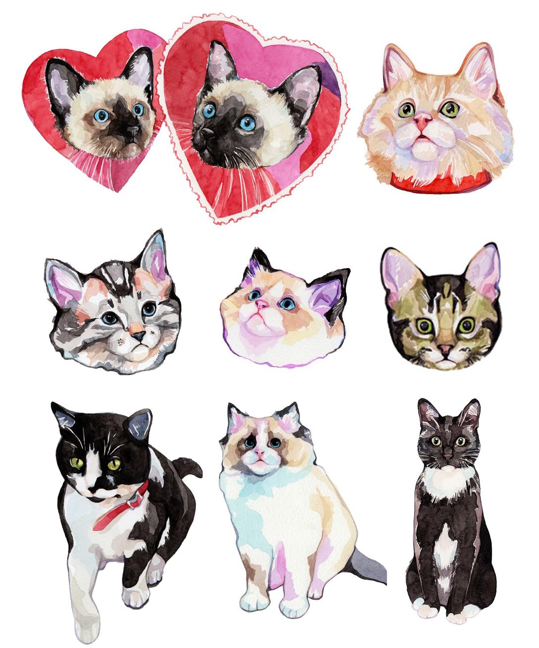 lmcats