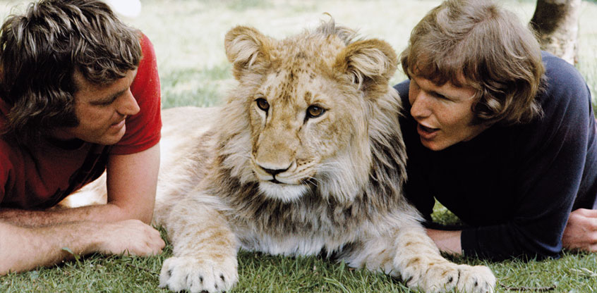 John Rendall, Christian the Lion and Ace Bourke in the 1970's.