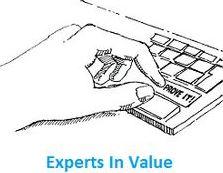expertsinvalue logo.JPG