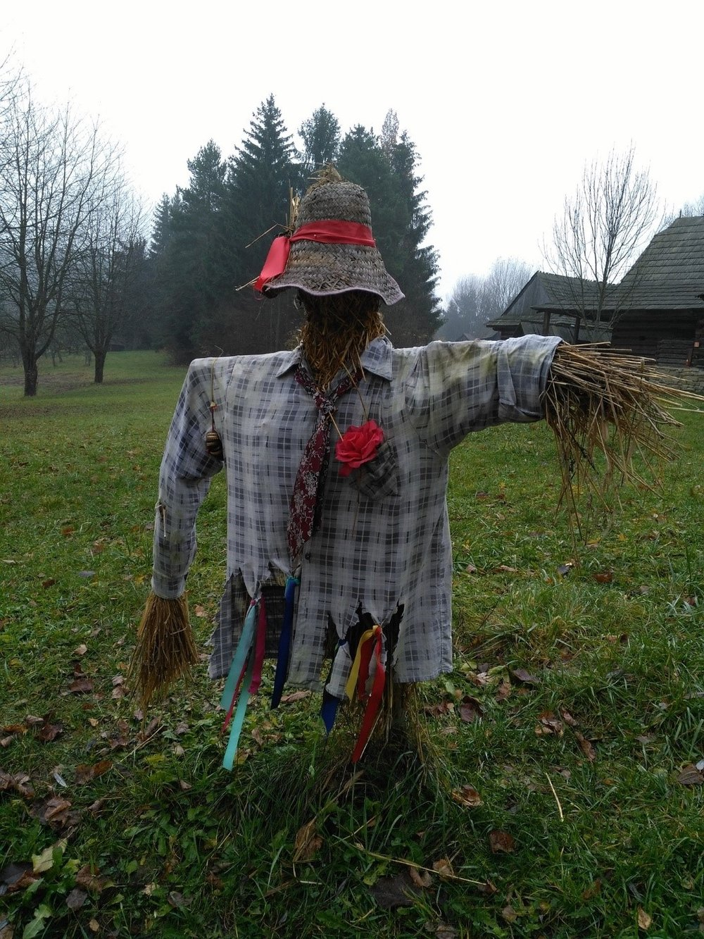 scarecrow compressed.jpg