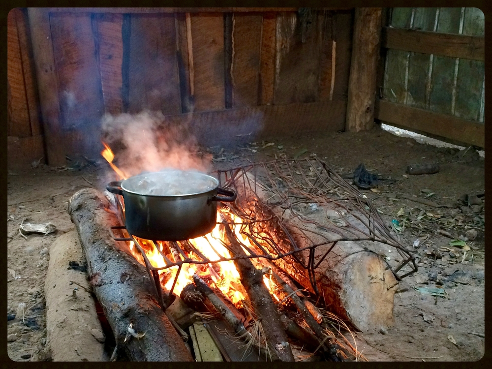 Boiling Potatoes.jpg
