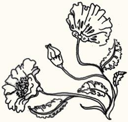 FlowerTopLeft.png
