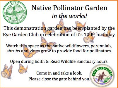 The Pollinator Garden welcome sign