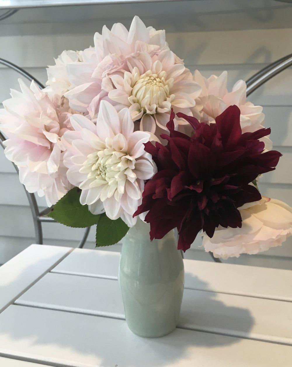 Cut Flowers from the Garretts' Healthy Yard