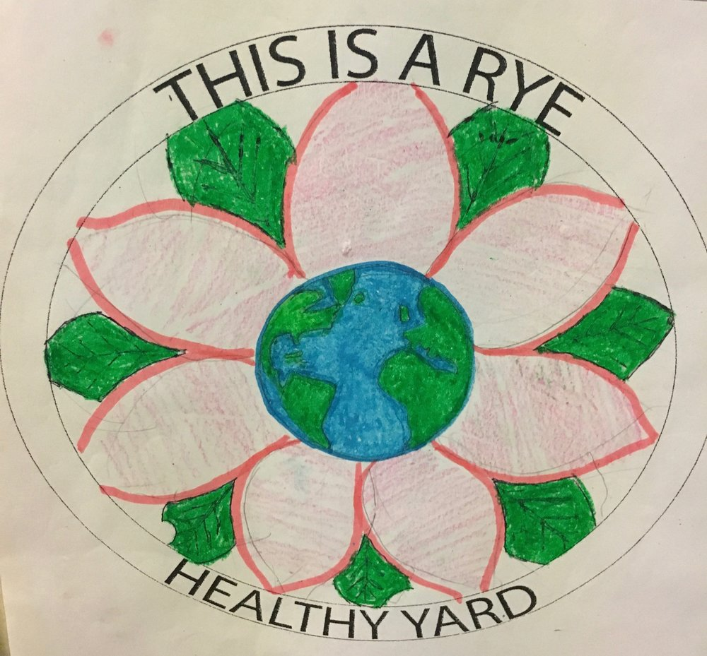 HEALTHY YARD DESIGN CONTEST