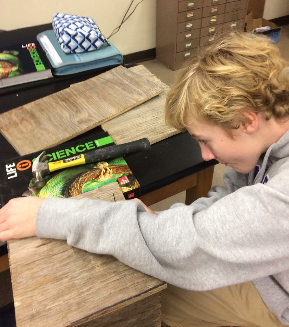 RMS ALIVE seventh grader, Harry Swanson, building a bat house for our school grounds.