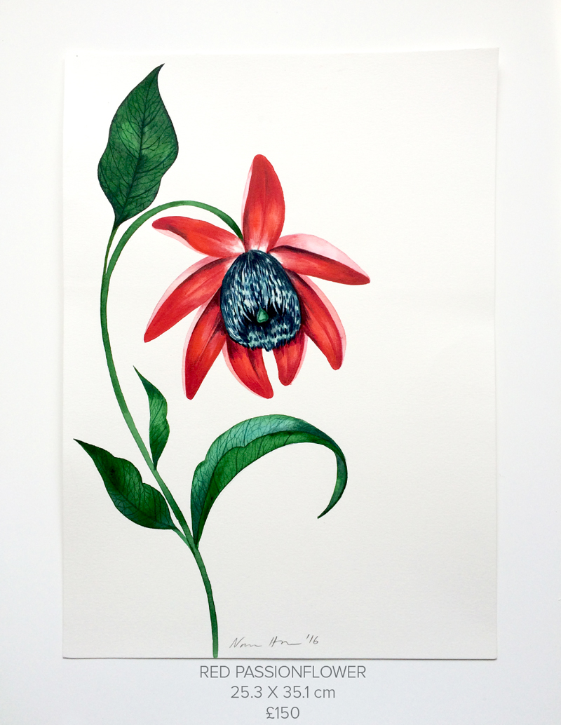 Red-Passionflower.jpg