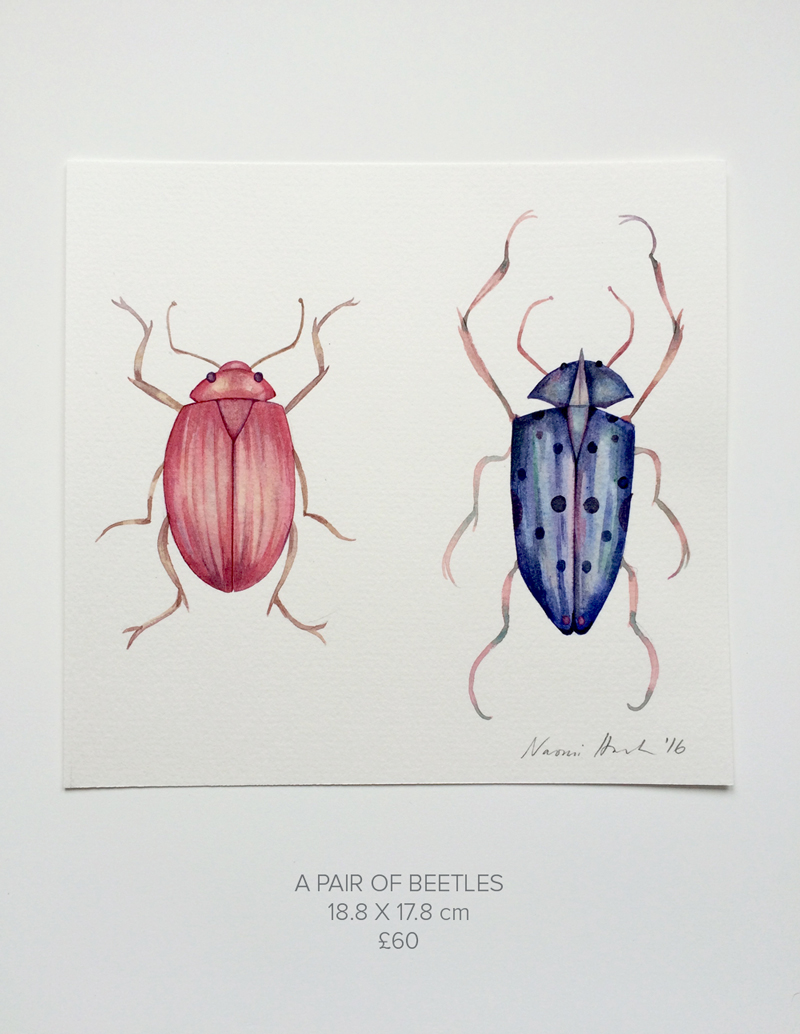 A-Pair-of-Beetles.jpg