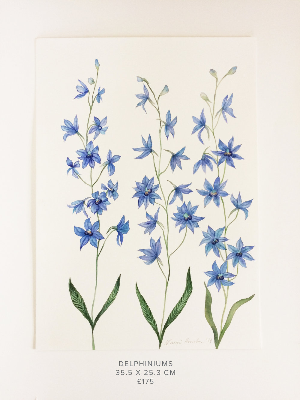 Delphiniums PS.jpg