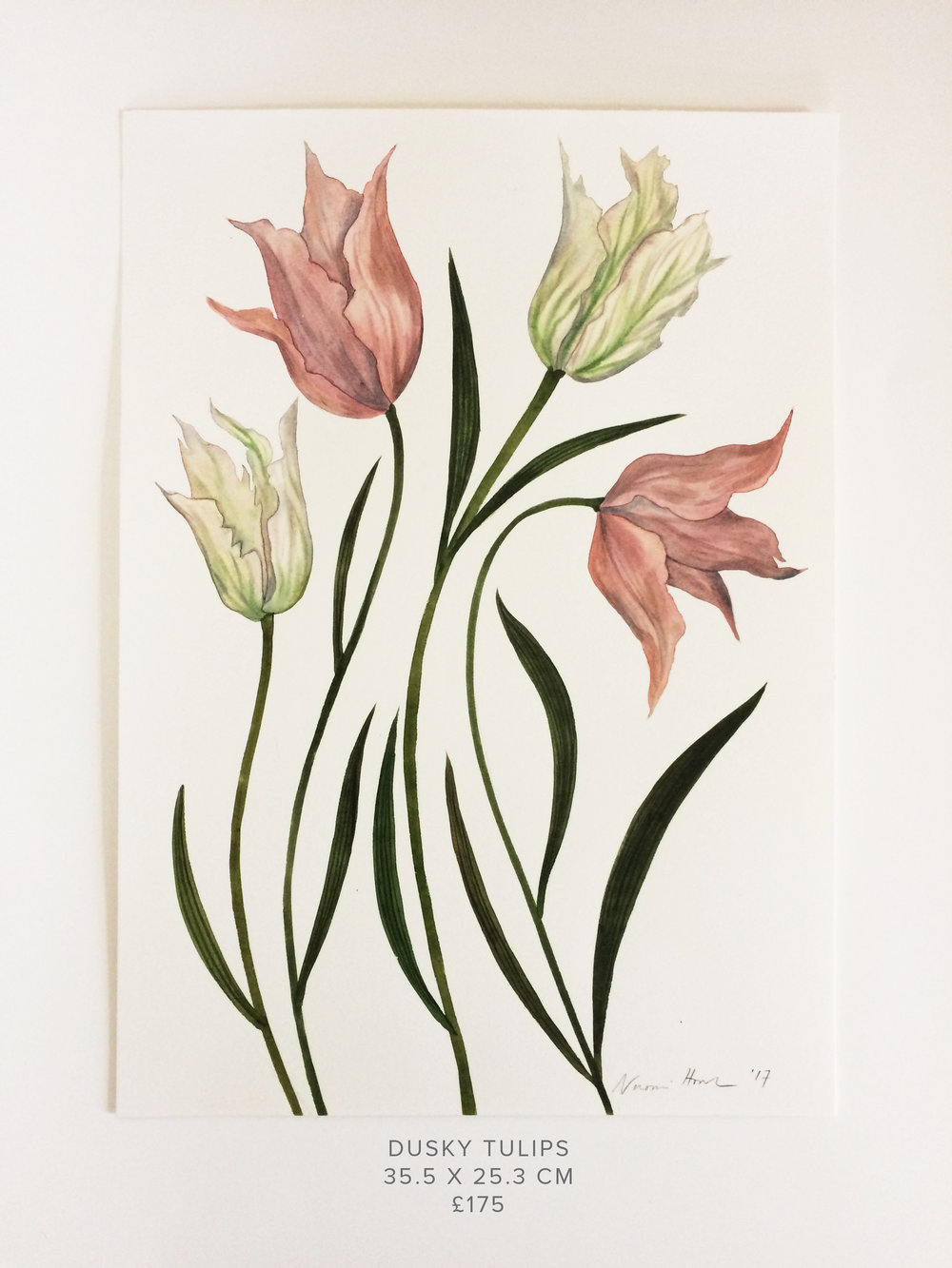 Dusky Tulips PS.jpg