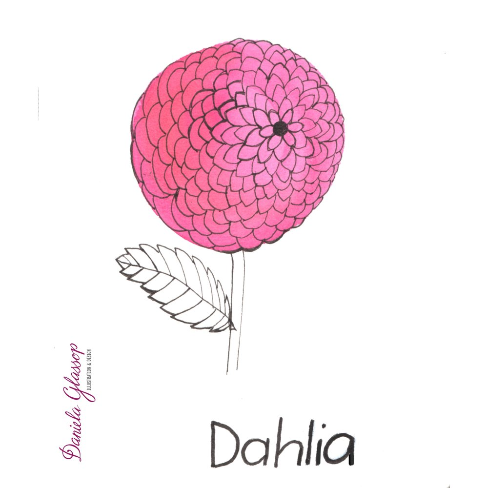 InktoberCB-Day16-Dahlia-DanielaGlassop.JPEG