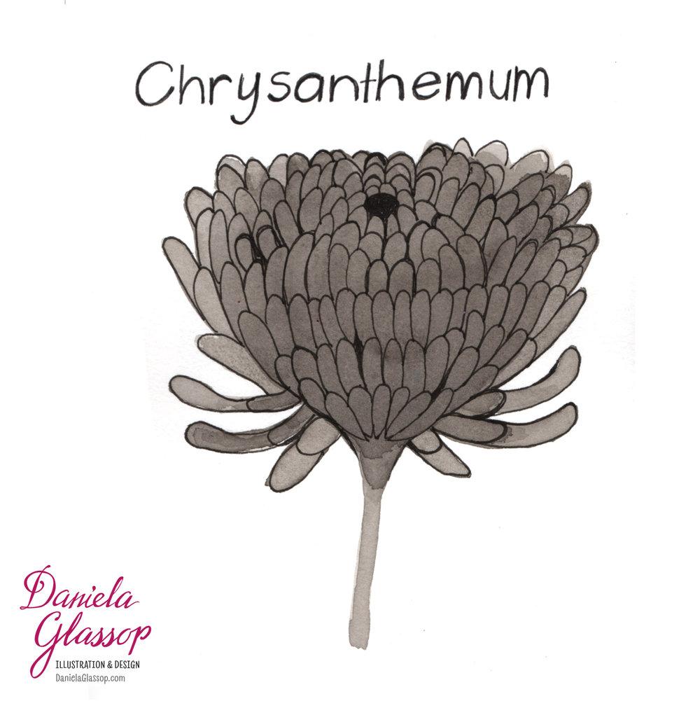 InktoberCB-Day14-Chrysanthemum.jpg