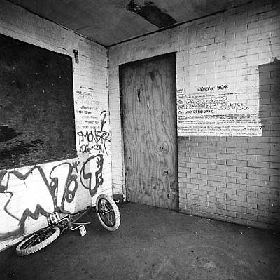 "On a wall beside a vacant apartment on the seventh floor of 3542 South State Street—a high-rise at Stateway Gardens known as ""The House of Pain""—words of ardor and longing flow across rows of brick."