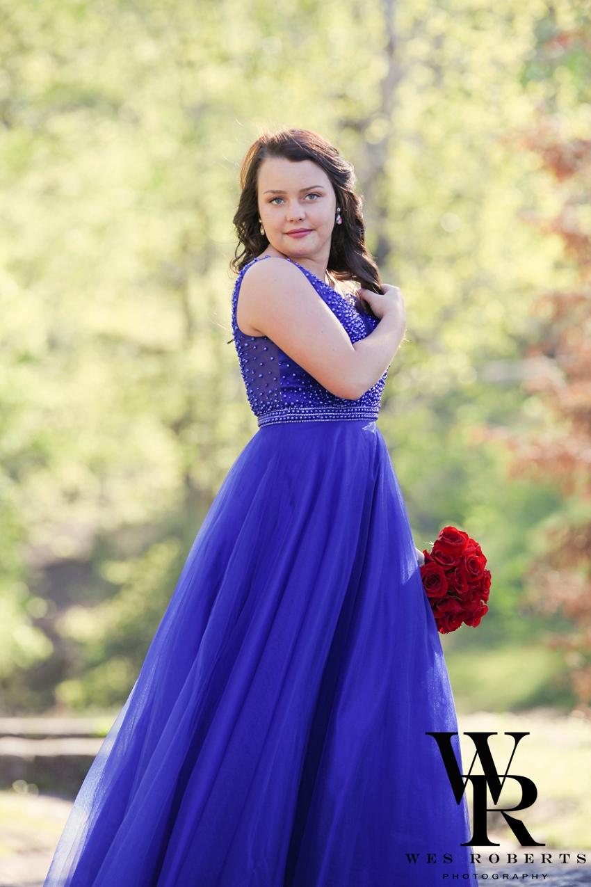 Ryan Prom Dress_-6.jpg