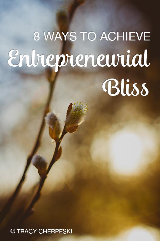 entrepreneurial bliss handbook