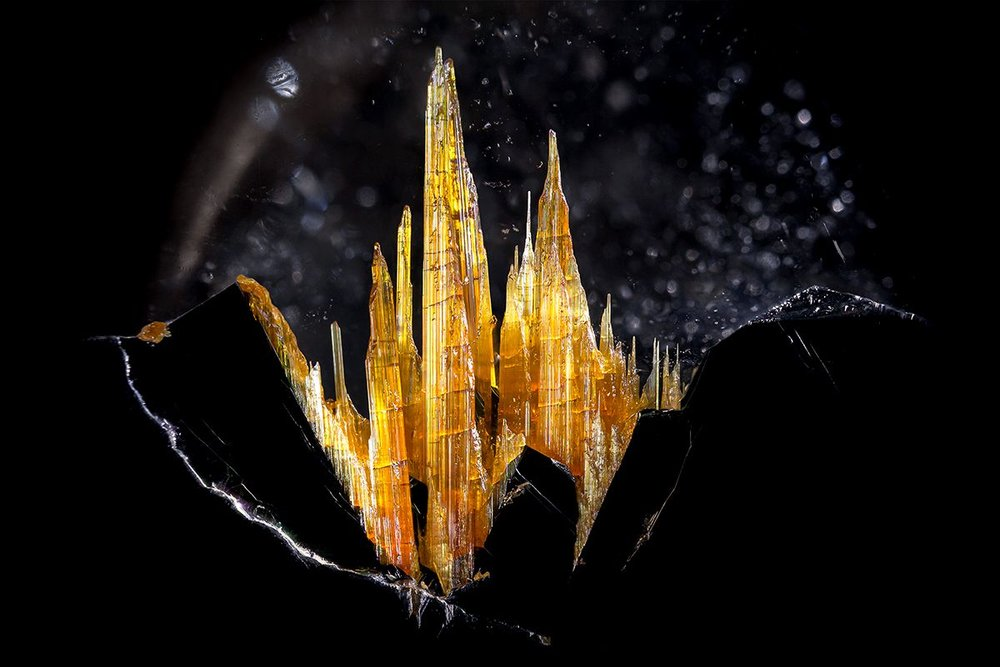 Rutile on hematite in quartz © Danny J Sanchez Novo Horizonte, Bahia, Brazil Field of view = 14.4mm • Depth of field = 5.55mm