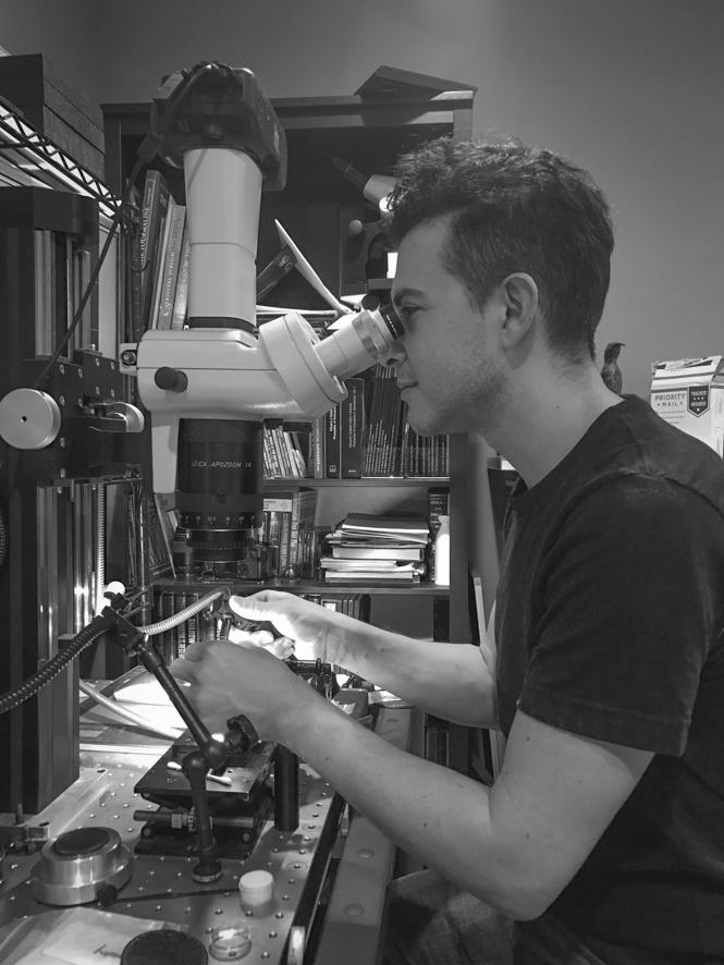Danny at his microscope