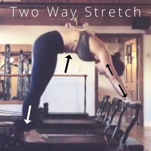 Copy of Two Way Stretch.png
