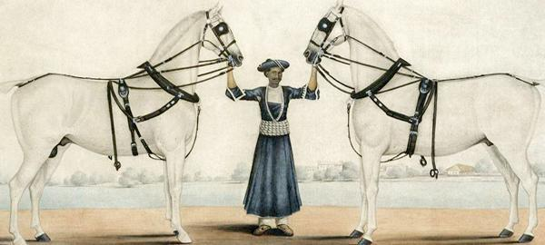 Shaykh Muhammad Amir of Karraya, A Syce Holding Carriage Horses, c. 1845 (detail) © The Metropolitan Museum of Art