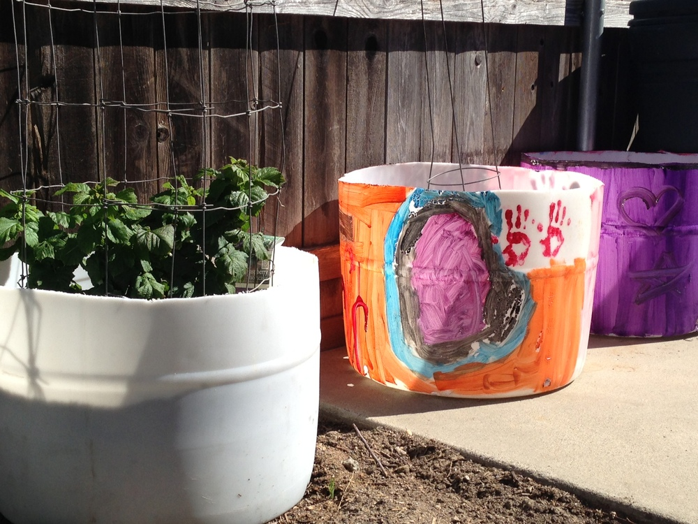 Results of the after school program:  vegetables and planters.