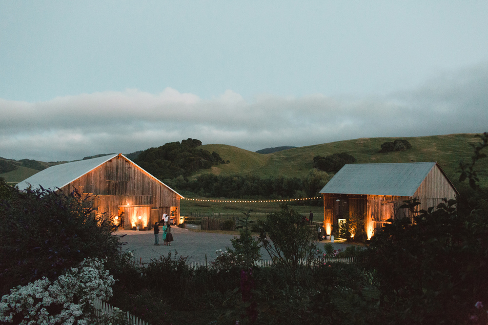 Chileno Valley Ranch Wedding, Petaluma Kelly Brown Photographer