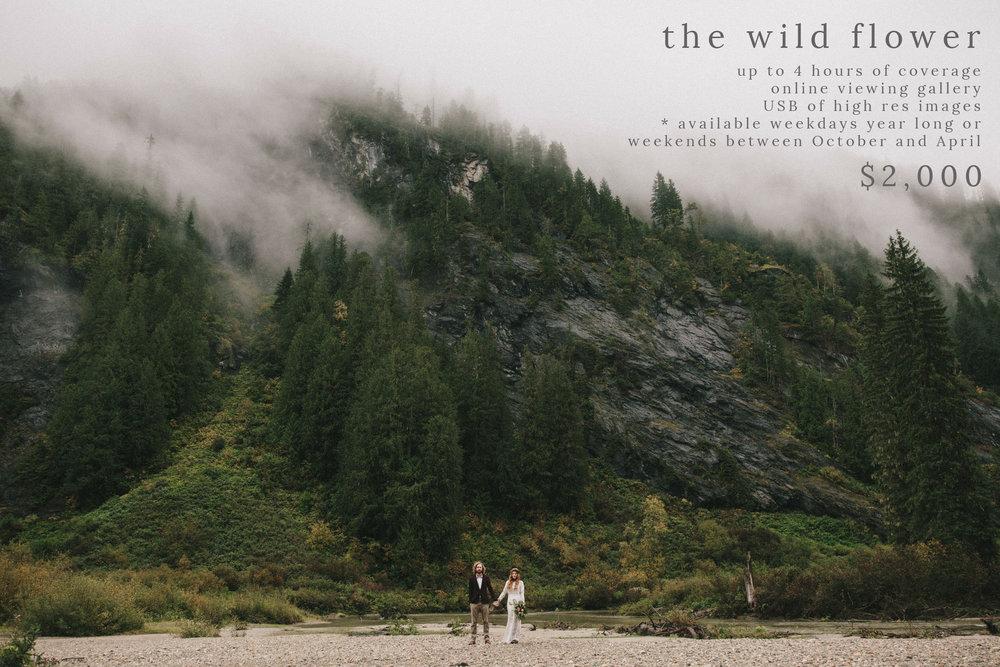 the wildflower.jpg