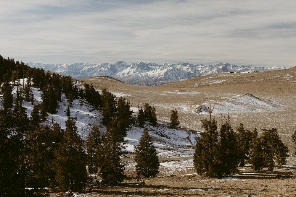 eastern sierras-17.jpg
