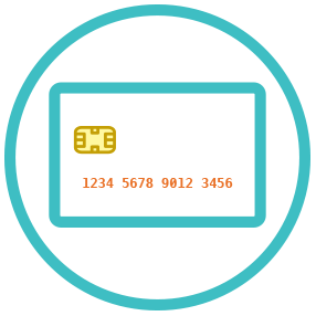 EMV                                    (chip + PIN; chip + signature)