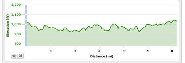 10k, running