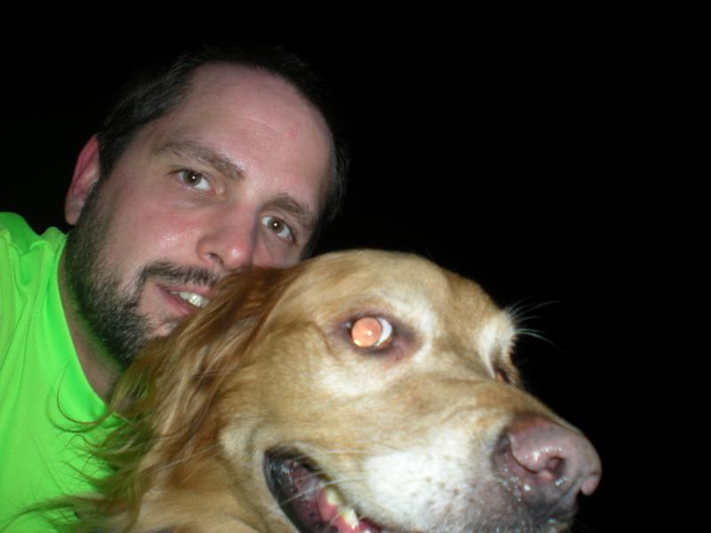 Golden retriever, Duke, running