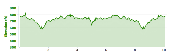 Virginia 10 Miler elevation, Lynchburg