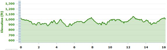 Aug. 21 long run elevation