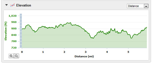 Trail Nut 10k elevation